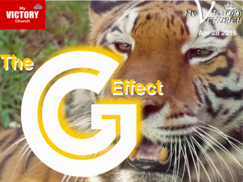 Ebook the G Effect