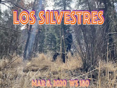 Servicio Dominical #180 - 03/08/2020 - Los Silvestres -