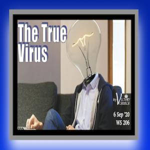 LIVE: WS206 The True Virus